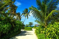 Живописный остров Стоковая Фотография