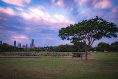 Живописный парк в Австралии стоковая фотография