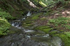 Живописный поток горы, вдоль песни ka ¡ haidouÅ стоковое изображение rf