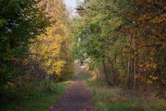Живописный путь осени Стоковая Фотография