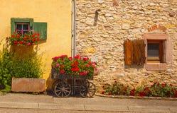 Живописный старый фасад при окна украшая цветки Стоковое Изображение