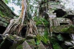 Животики Phrom, Angkor Wat, Камбоджа Стоковые Изображения