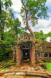 Животики Prohm, часть старого комплекса виска кхмера в джунглях Стоковая Фотография