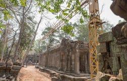 Животики Prohm, Angkor Wat, Siem Reap, Камбоджа Животики Proh 22-ое июля 2015 Стоковые Изображения