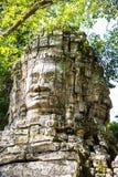 Животики Prohm Wat Стоковые Изображения RF
