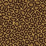животная безшовная текстура Стоковое Фото