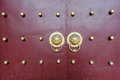 Животная головная медная дверь ногтя стоковая фотография