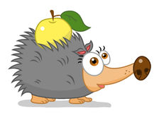 животная иллюстрация hedgehog шаржа Стоковая Фотография
