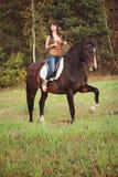 животная персона лошади девушки приятельства стоковое изображение rf