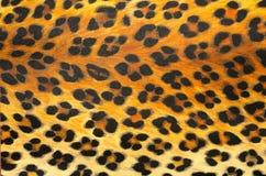 Животная текстура предпосылки печати Стоковое Изображение