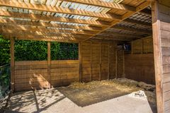 Животная ферма загона: Пустое поле для лошадей стоковые изображения rf