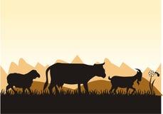 животная ферма s Стоковые Фото