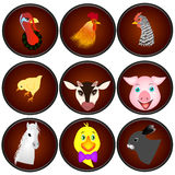Животноводческие фермы значков Стоковое Изображение RF