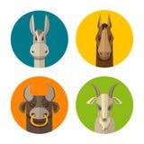 Животноводческие фермы осел, лошадь, бык, вектор значка дизайна козы плоский Стоковые Изображения RF