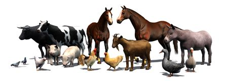 Животноводческие фермы - отделенные на белой предпосылке Стоковые Изображения