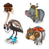 Животное в одеждах, страусе, бегемоте и овцах иллюстрация вектора