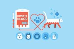 Животное донорство крови Стоковое фото RF