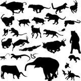 животные азиатские иллюстрация вектора