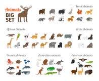 Животные в плоском стиле Стоковые Изображения