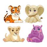 Животные джунглей младенца с милыми глазами Стоковые Изображения