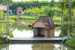 Животные дома плавая в саде стоковое фото rf