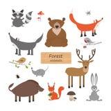 Животные леса в стиле шаржа на белой предпосылке Anim леса Стоковое фото RF