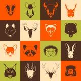 Животные леса бесплатная иллюстрация
