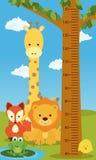 Животные диаграммы высоты бесплатная иллюстрация