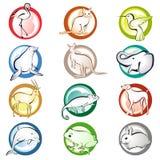 животные иконы Стоковое Фото