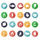 Животные, листья, огонь, заморозок, пар, значки воды Плоский стиль иллюстрация вектора