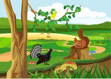 Животные леса и птицы, сцена живой природы, иллюстрация вектора стоковая фотография rf