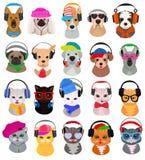 Животные наушники vector кот или собака dj в наушниках слушая к комплекту иллюстрации музыки animalistic характера Стоковые Фотографии RF