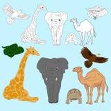 животные одичалые Иллюстрация штока