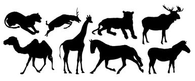 животные различные стоковое изображение