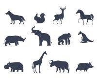 Животные силуэты значков Стоковое фото RF