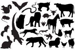 животные силуэты Стоковая Фотография RF