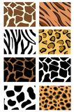 животные текстуры кожи иллюстрации иллюстрация вектора