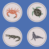 Животные треугольника акватические Стоковые Фото