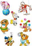 Животные цирка Стоковые Фотографии RF