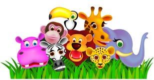 животные джунгли Стоковые Изображения RF