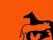 животные Стоковая Фотография RF