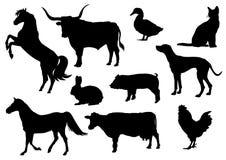 животные иллюстрация штока