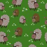 Животный безшовный луг овец текстуры Стоковая Фотография RF