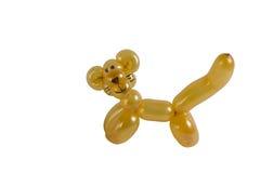 животный изолированный кот воздушного шара Стоковое Фото