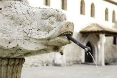 Животный каменный фонтан Стоковая Фотография