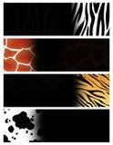 животный коллектор знамени бесплатная иллюстрация