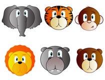 животный комплект сафари иконы Стоковое Фото