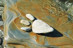 Животный след ноги в камне Стоковая Фотография