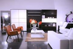 живущая белизна комнаты Стоковая Фотография RF