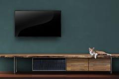 Живущая комната привела ТВ на стене с котенком на fu средств массовой информации деревянного стола Стоковая Фотография
